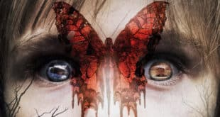 Before i wake - Filmkritik