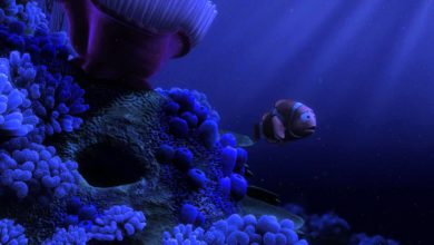 Photo of Finding No-One: Die traurige und düstere Findet Nemo Theorie